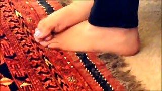 arab pied
